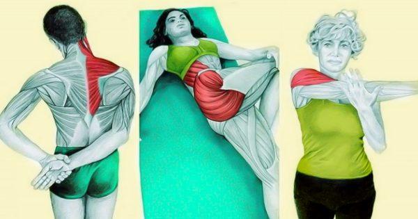 ¿Cómo puedes activar los músculos de tu cuerpo? Estos ejercicios de estiramiento te pueden ayudar…