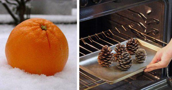 Fragancias navideñas: 8 maravillosas ideas para que el hogar siempre huela a naturaleza.
