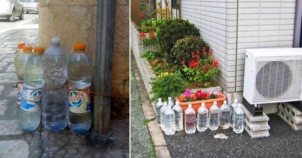 ¿Por qué los italianos dejan botellas de agua en las puertas delanteras?