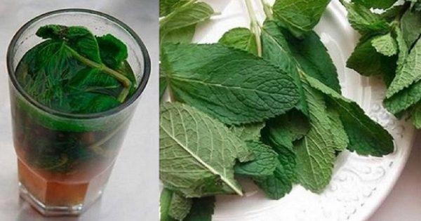 Cuida tu cuerpo, de una manera deliciosa: ¡Limpia tu hígado de forma natural!