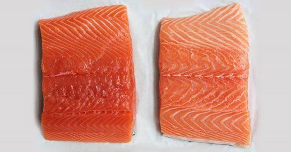 En frente de ti, hay dos trozos de salmón. ¿El cuál de los dos eligirías tú?