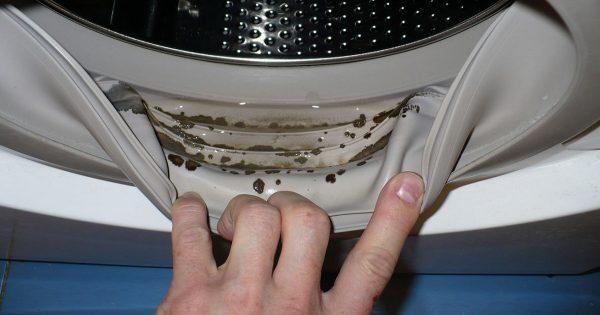 ¡En la lavadora se descubrió el moho! Qué bien que yo sé este maravilloso método…