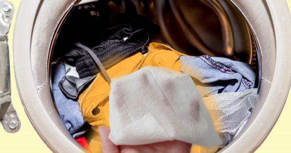 ¿Por qué deberías echar una toallita húmeda en la lavadora?