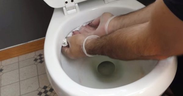 Cómo convertir un baño en un lugar de limpieza ideal.