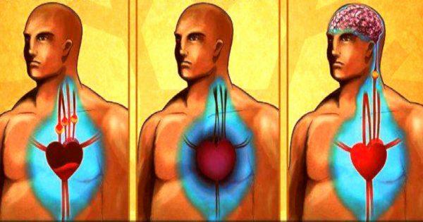 Consejos de la medicina tradicional: Cómo limpiar los vasos sanguíneos.