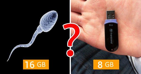 11 curiosidades extraordinarias sobre la esperma.