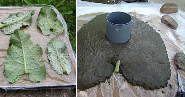 Ella cortó 4 hojas de bardana y las cubrió con cemento. Nadie esperaba tal efecto…