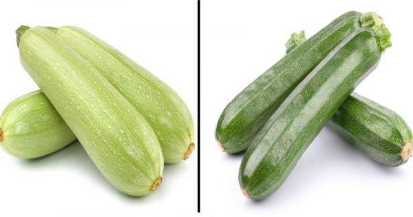 En qué se diferencian la calabaza normal y el calabacín. ¿Cuál es más sano y delicioso?