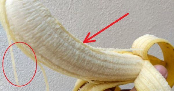 Los secretos de las fibras blancas bajo la cáscara del plátano.