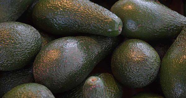¡Dieta que «mata de hambre» al cáncer y supera la diabetes! Lo que necesitas saber de este remedio curativo natural…