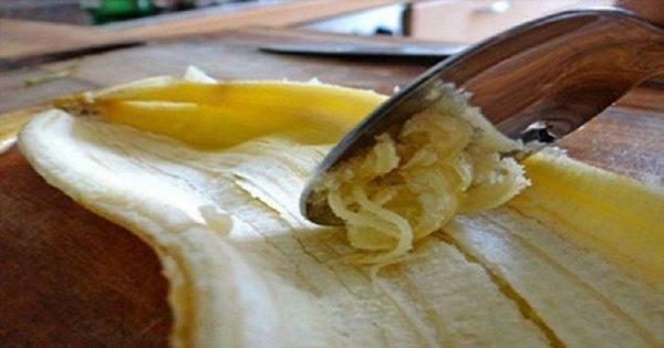 ¡Nunca más tirarás la cáscara de plátanos después de leer ESTO!