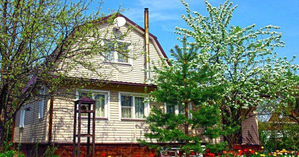 ¿Qué árboles no necesitan plantarse cerca de la casa, y por qué?