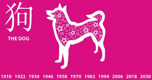 ¡El año del perro, color amarillo y el elemento tierra!