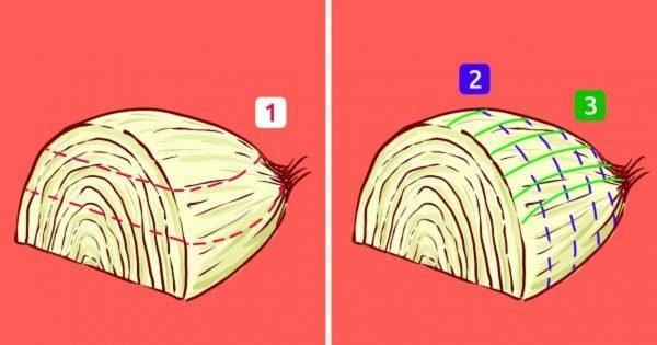 Secretos del cocinero: Cómo preparar platos más sabrosos